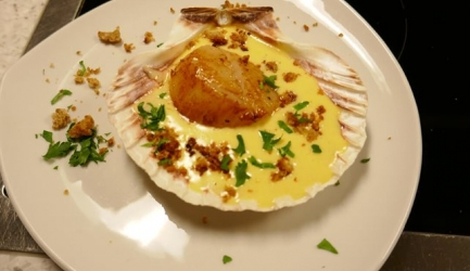 Coquilles Saint Jacques (Sint-Jacobs schelp) in citroenroomsaus